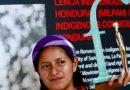 Cuatro activistas medioambientales denuncian amenazas
